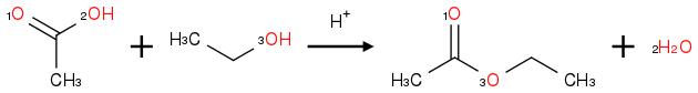 CC(=[O:1])[OH:2].<br />CC[OH:3]>[H+]><br />CC(=[O:1])[O:3]CC.<br />[OH2:2]
